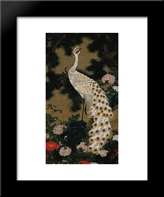 Old Pine Tree And Peacock: Modern Black Framed Art Print by Ito Jakuchu