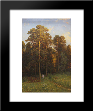 At The Edge Of A Pine Forest: Modern Black Framed Art Print by Ivan Shishkin