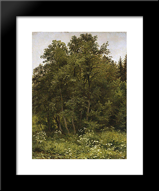 At The Edge Of The Forest: Modern Black Framed Art Print by Ivan Shishkin