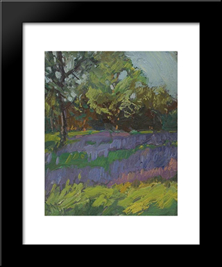 Lupines, High Park: Modern Black Framed Art Print by J. E. H. MacDonald