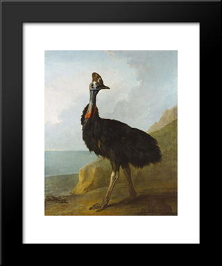 Cassowary: Custom Black Or Gold Ornate Gallery Style Framed Art Print by Jean Baptiste Oudry