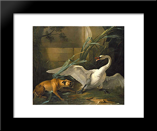 Swan Attacked By A Dog: Modern Black Framed Art Print by Jean Baptiste Oudry