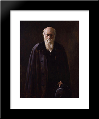 Charles Robert Darwin: Modern Black Framed Art Print by John Collier