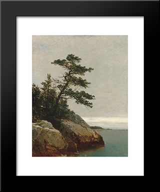 The Old Pine, Darien, Connecticut: Modern Black Framed Art Print by John Frederick Kensett