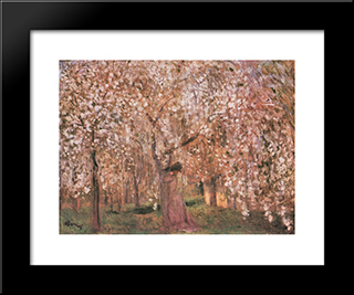 Cherry Tree Blossoms: Modern Black Framed Art Print by Jozsef Rippl Ronai
