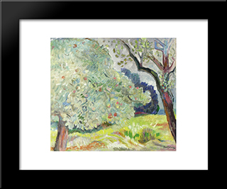 Apple Tree, Late Summer: Modern Black Framed Art Print by Karl Schrag