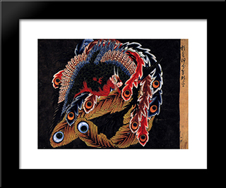 Ceiling Of Ganshoin Temple At Obuse: Modern Black Framed Art Print by Katsushika Hokusai