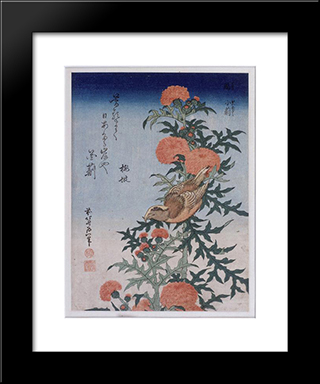 Crossbill And Thistle: Custom Black Wood Framed Art Print by Katsushika Hokusai