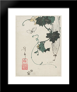Butterfly And Gourd: Modern Black Framed Art Print by Keisai Eisen