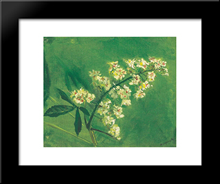 Chestnut Flower: Modern Black Framed Art Print by Laszlo Mednyanszky