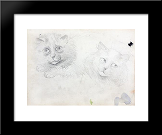 Sketches Of Burmese Cats: Modern Black Framed Art Print by Louis Wain