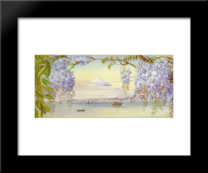 Distant View Of Mount Fujiyama, Japan, And Wistaria: Modern Black Framed Art Print by Marianne North