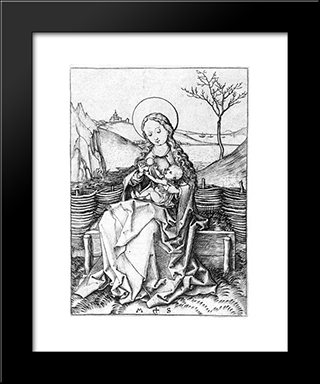 Madonna On The Turf Bench: Modern Black Framed Art Print by Martin Schongauer