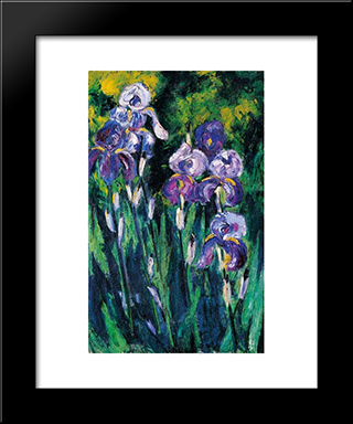 Irises In Evening Shadows: Modern Black Framed Art Print by Max Pechstein