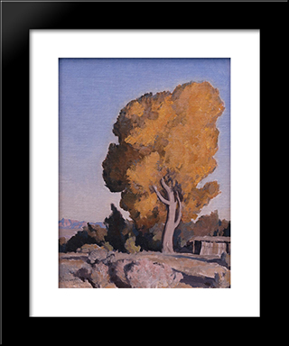 Low Country Cottonwood: Modern Black Framed Art Print by Maynard Dixon