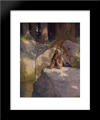 Sir Launcelot In The Wilderness, After Leaving The Round Table: Modern Black Framed Art Print by N.C. Wyeth