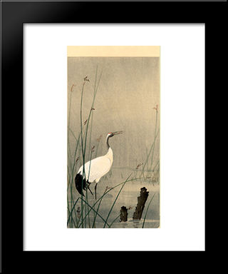 Crane In Small Water: Modern Black Framed Art Print by Ohara Koson