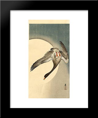 Flying White-Fronted Goose Seen From Underneath In Front Of The Moon: Modern Black Framed Art Print by Ohara Koson
