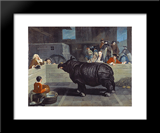 Rhinoceros In Venice: Modern Black Framed Art Print by Pietro Longhi