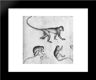 Apes: Modern Black Framed Art Print by Pisanello