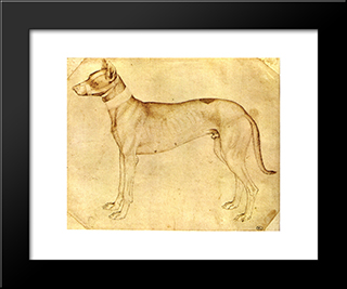 Dog: Modern Black Framed Art Print by Pisanello