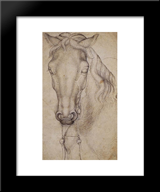 Study Of The Head Of A Horse: Modern Black Framed Art Print by Pisanello