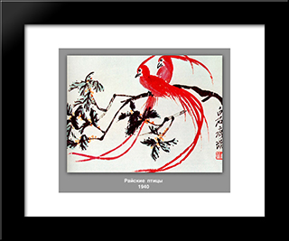 Birds Of Paradise : Custom Black Wood Framed Art Print by Qi Baishi