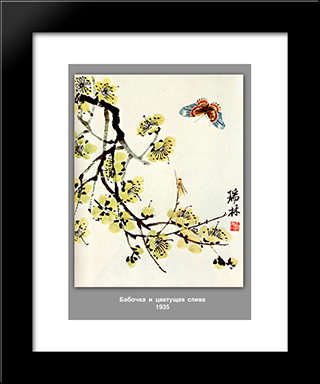 Butterfly And Flowering Plum : Custom Black Wood Framed Art Print by Qi Baishi