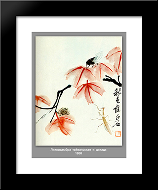Likvidambra Taiwan And The Cicada : Custom Black Wood Framed Art Print by Qi Baishi