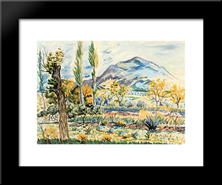 Fique Landscape: Modern Black Framed Art Print by Rafael Zabaleta