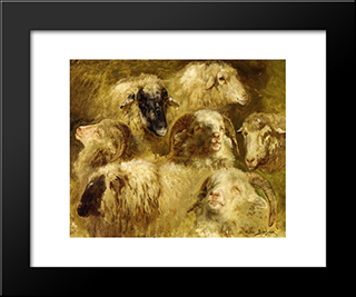Heads Of Ewes And Rams: Modern Black Framed Art Print by Rosa Bonheur