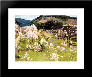Terraced Garden In Mallorca: Modern Black Framed Art Print by Santiago Rusinol