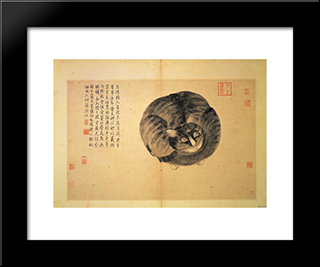 Cat (Sketches From Life): Modern Black Framed Art Print by Shen Zhou