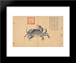 Crab (Sketches From Life): Modern Black Framed Art Print by Shen Zhou