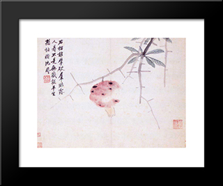 Lay Down And Travel: Modern Black Framed Art Print by Shen Zhou