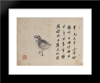 Quail (Sketches From Life): Modern Black Framed Art Print by Shen Zhou