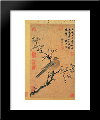 Turtledove Calling For Rain: Modern Black Framed Art Print by Shen Zhou