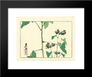 Flowering Plant - Hana Kurabe: Modern Black Framed Art Print by Shibata Zeshin