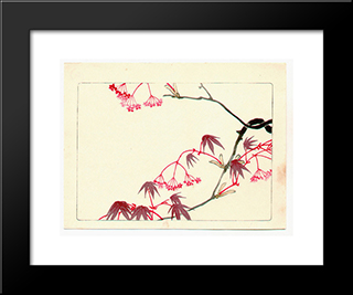 Red Maple - Hana Kurabe: Modern Black Framed Art Print by Shibata Zeshin