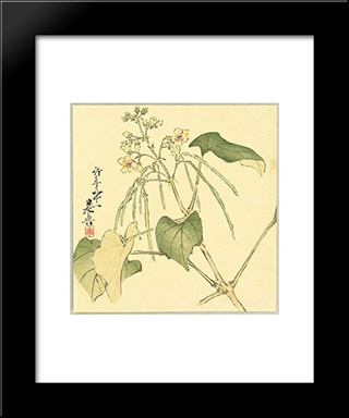 Summer Flower: Modern Black Framed Art Print by Shibata Zeshin