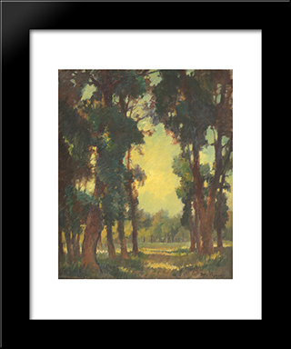 Forest Vista: Modern Black Framed Art Print by Stefan Popescu