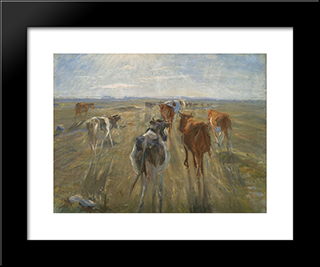 Long Shadows. Cattle On The Island Of Saltholm: Modern Black Framed Art Print by Theodor Philipsen