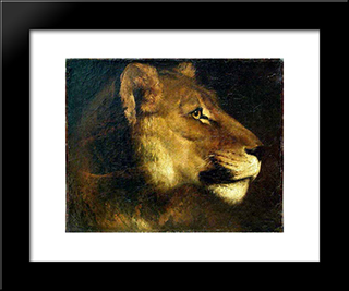 Head Of Lioness: Custom Black Wood Framed Art Print by Theodore Gericault