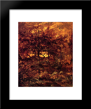 Fall At The Jean-Du-Paris, In The Forest Of Fontainebleau: Modern Black Framed Art Print by Theodore Rousseau