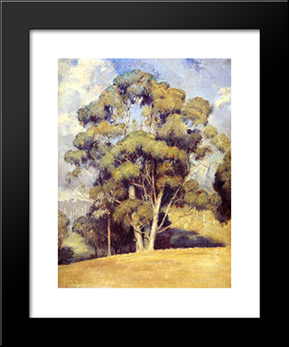 A Queen Of Gums: Modern Black Framed Art Print by Tom Roberts