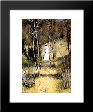 A Summer Morning Tiff: Modern Black Framed Art Print by Tom Roberts