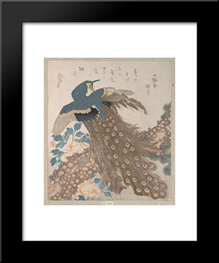 Peacock On The Pine Tree: Modern Black Framed Art Print by Toyota Hokkei