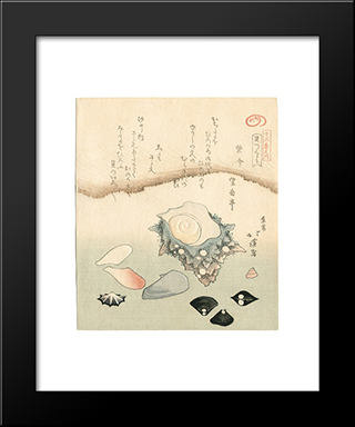 Seashells: Modern Black Framed Art Print by Toyota Hokkei