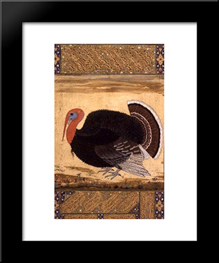 A Turkey-Cock Brought To Jahangir From Goa In 1612: Modern Black Framed Art Print by Ustad Mansur