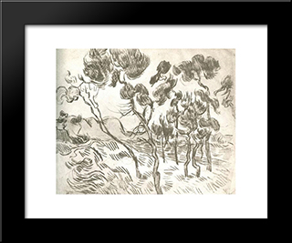 A Group Of Pine Trees Near A House: Modern Black Framed Art Print by Vincent van Gogh